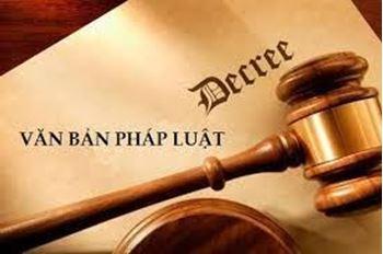 Tìm kiếm  Ban hành 19 văn bản QPPL trong tháng 2/2019